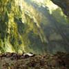 Wisata Adventure Jogja di Goa Cokro