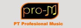 PT. Profesional Music