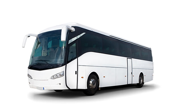 big bus yogyakarta